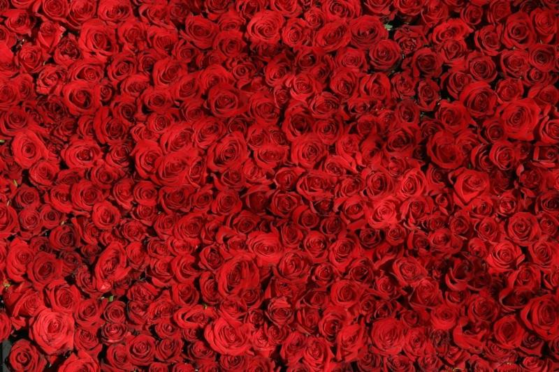 6 Feng Shui Tips For Romance - Red Roses